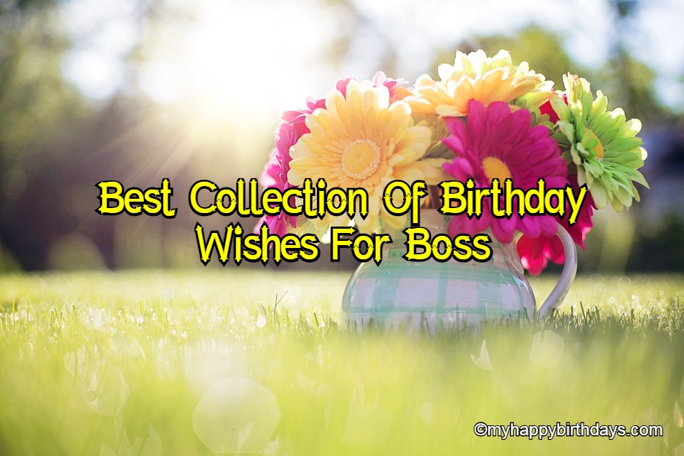 Happy Birthday Wishes For Boss, Messages, Status, Quotes