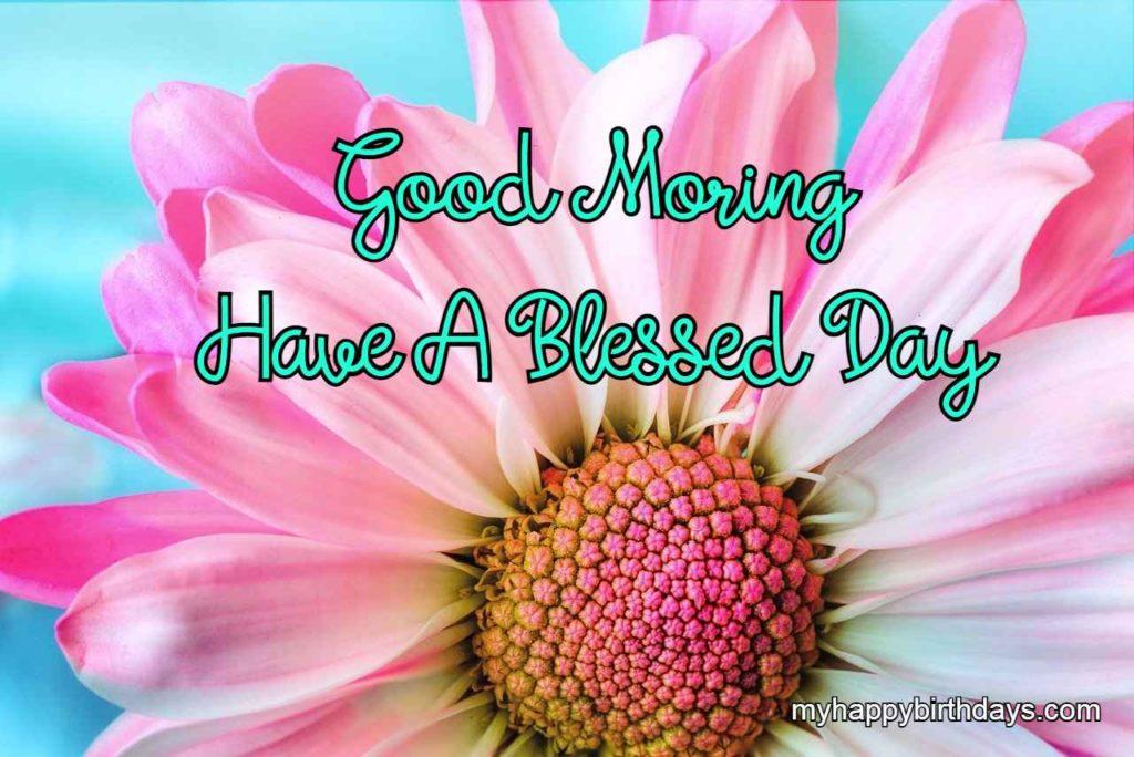 Beautiful Good Morning Pink Flower Pic