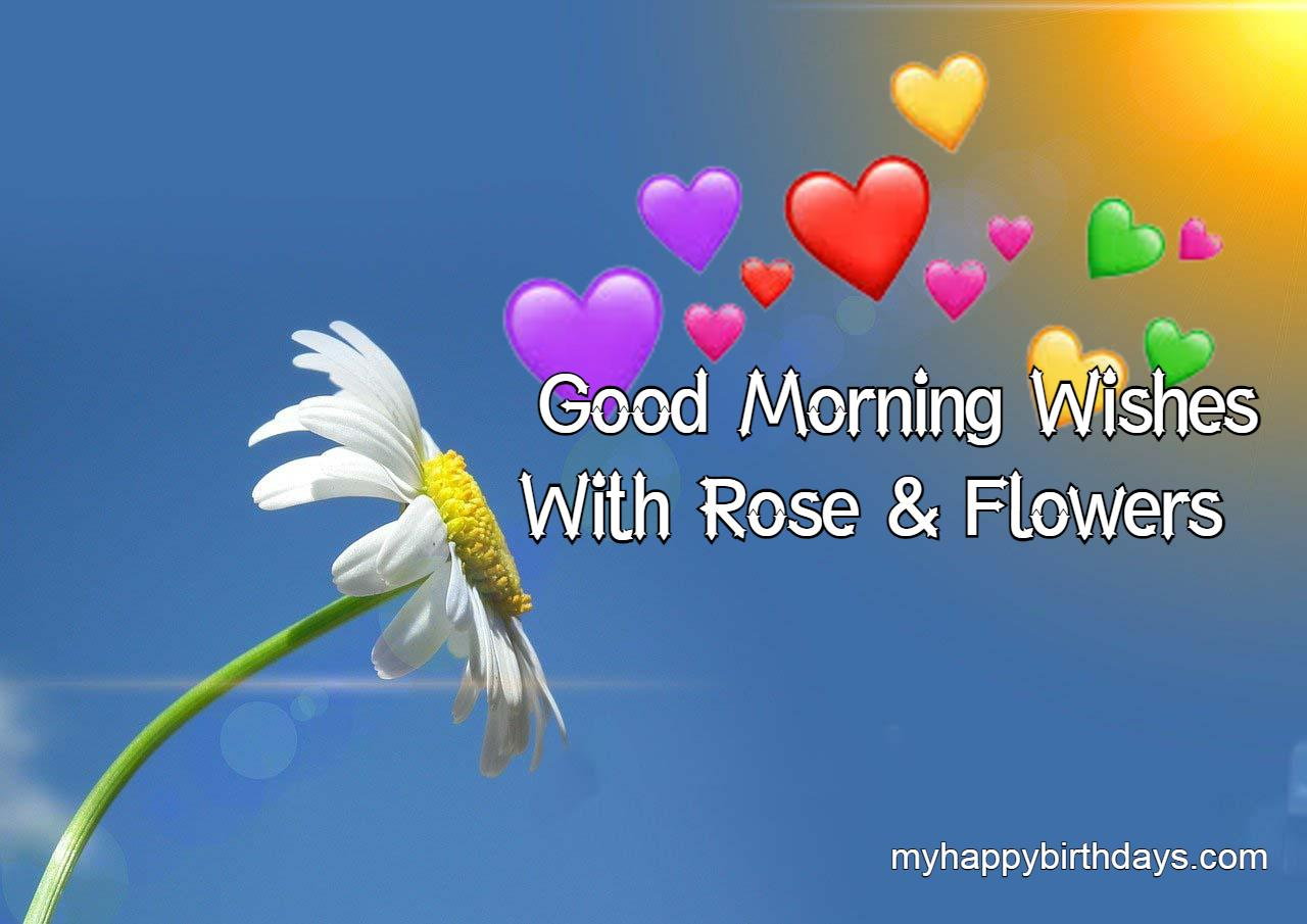 Good Morning With Roses and Flowers