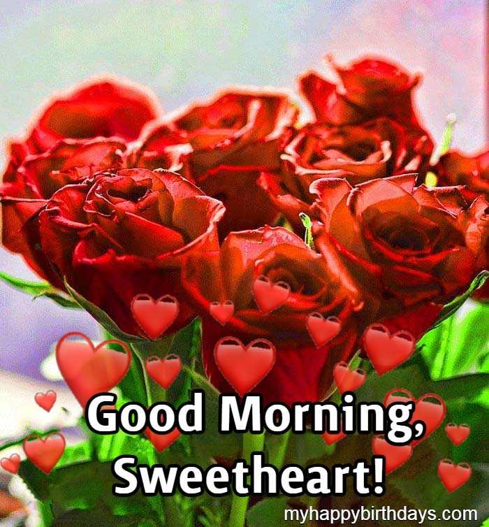 good morning beautiful red roses