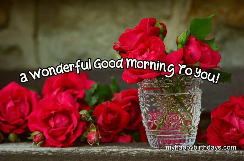 red roses with good morning text
