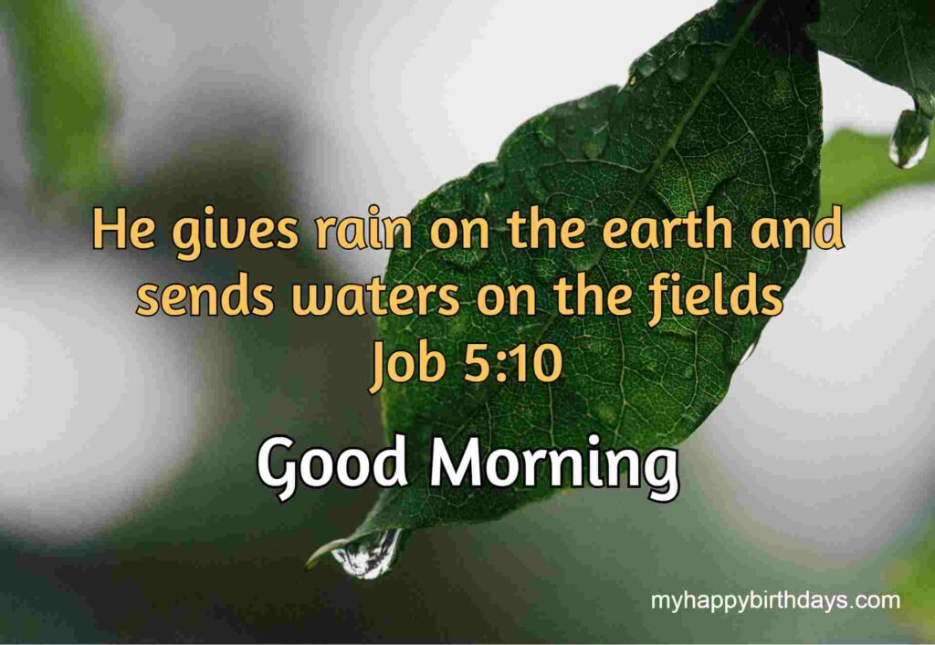Good morning bible quote