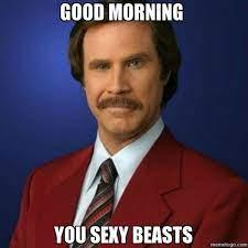 Good Morning You Sexy Beast Meme