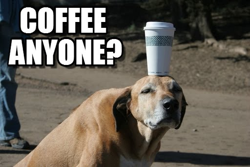 Coffee Anyone Morning Funny Memes
