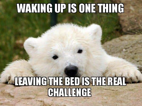 Funny Good Morning Memes For Boyfriend