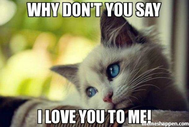 Why don't you say I love you to me meme
