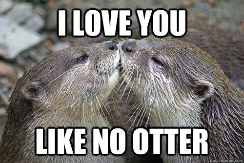 I love you like no otter meme
