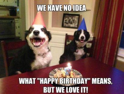 Funny Happy Birthday Dog Memes