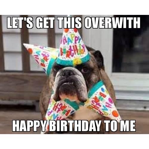 Happy Birthday Dog Meme 4
