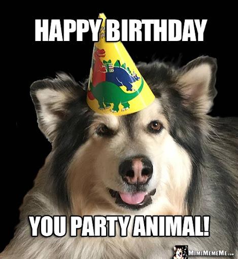 Happy Birthday Dog Meme 6