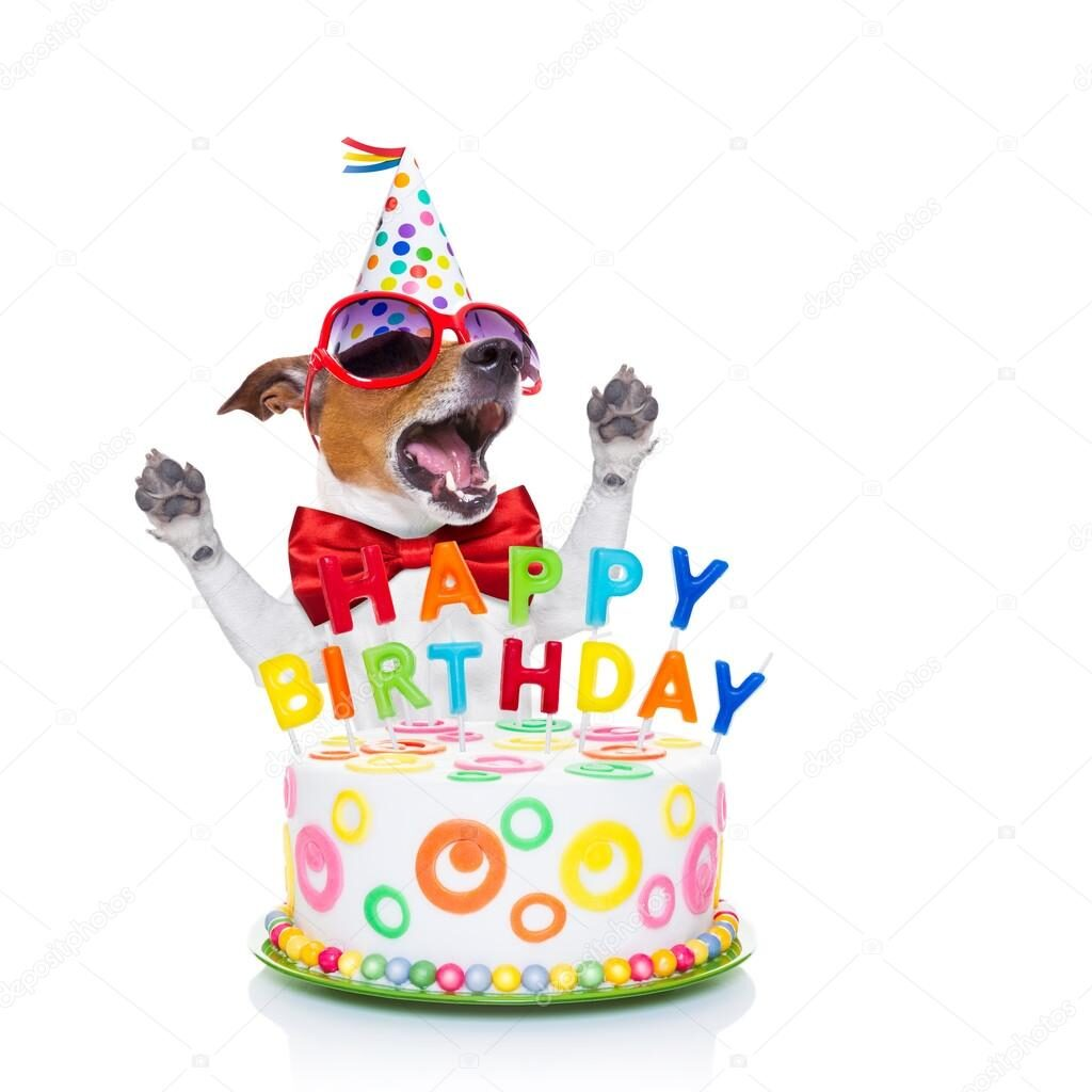 Doggies Birthday Wishes