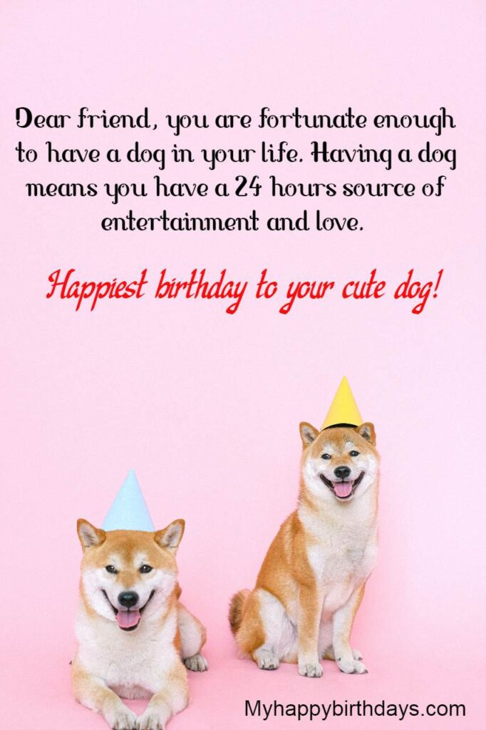 Birthday Wishes For A Friend's Dog