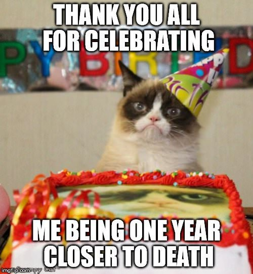 Cat Meme For Birthday Wishes