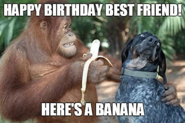 Happy Birthday Memes For Friends 5