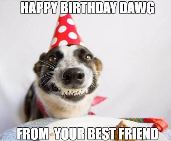 Happy Birthday Memes For Friends 7